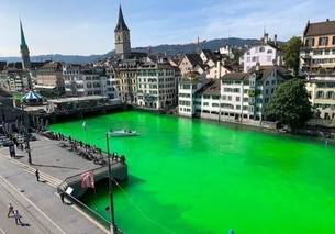La Limmat colorata di verde dagli attivisti Extinction Rebellion