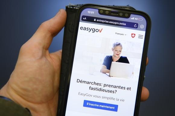 L interfaccia del sito Easygov.